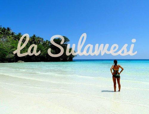 Que faire en Sulawesi